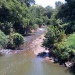 Mill Creek pathway